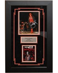 Sting Autographed WCW 8x10 Framed